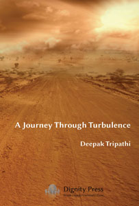 front cover of A Journey through Turbulence